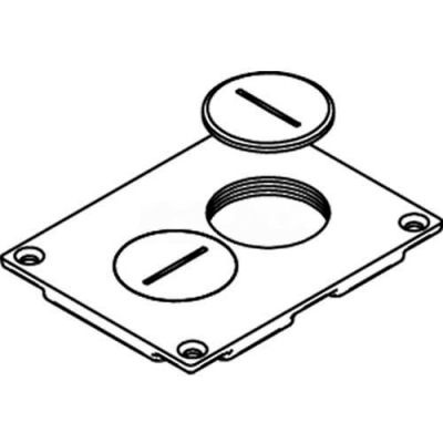Wiremold 828sptc Floor Box Duplex Receptacle Cover W/Screw Plugs, Brass - Pkg Qty 10