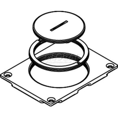 """Wiremold 829ck Floor Box Communication Cover, 2-5/8"""" & 2 1/4"""" Plugs, Brass - Pkg Qty 10"""