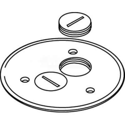 Wiremold 895sp Floor Box Cover Plate, Brass, W/Screw Plug Openings, For Carpet - Pkg Qty 8