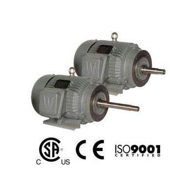 Worldwide Electric CC Pump Motor PEWWE10-18-215JP, TEFC, Rigid-C, 3 PH, 215JP, 10 HP, 1800 RPM