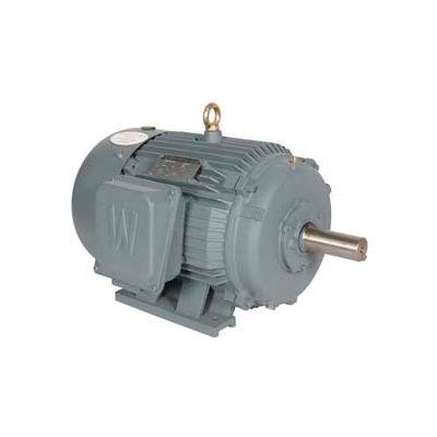 Worldwide Electric T-Frame Motor PEWWE25-18-284TS, GP, TEFC, Rigid, 3 PH, 284TS, 30.8 FLA