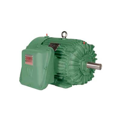 Worldwide Electric EXP Motor XPEWWE25-12-324T, TEXP, Rigid, 3 PH, 324T, 25 HP, 1200 RPM, 30.2 FLA