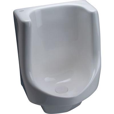 Zurn Z5795 - Vitreous China Waterless Urinal