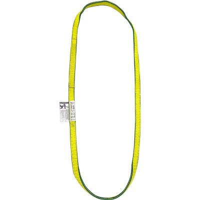 Lift America S152070 12' Poly Web Sling Endless, 4900/6200/12400 Lbs Cap