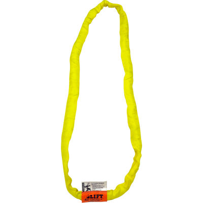 Lift America S201020 10' Poly Web Sling Endless, 6720/8400/16800 Lbs Cap